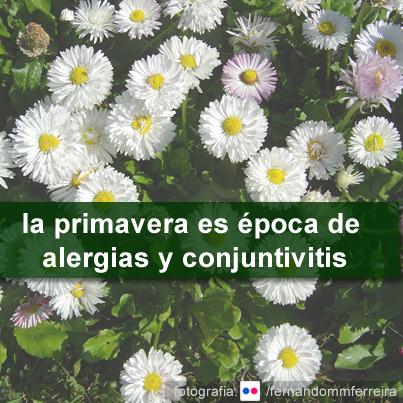 Primavera época de alergias y conjuntivitis